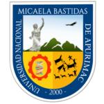 Universidad  Nacional Micaela Bastidas